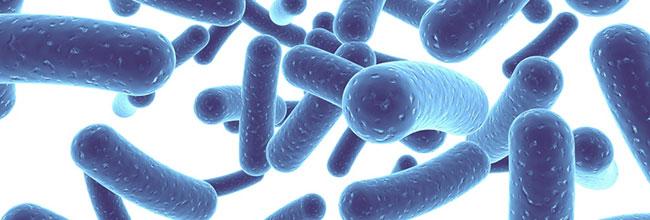 купить удобрение байкал-эм 1 на основе эффективныхмикроорганизмовибактерий дляхорошего урожая