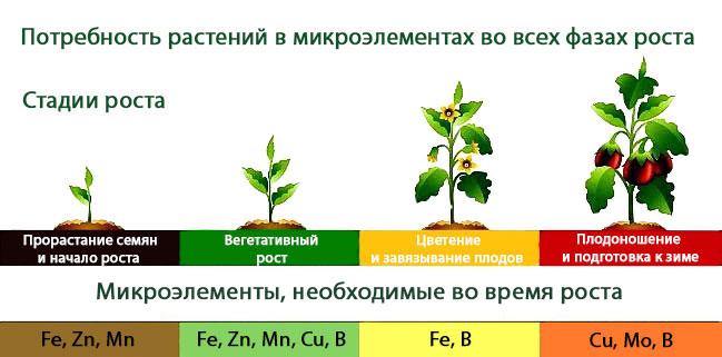 как повысить урожай байкал эм
